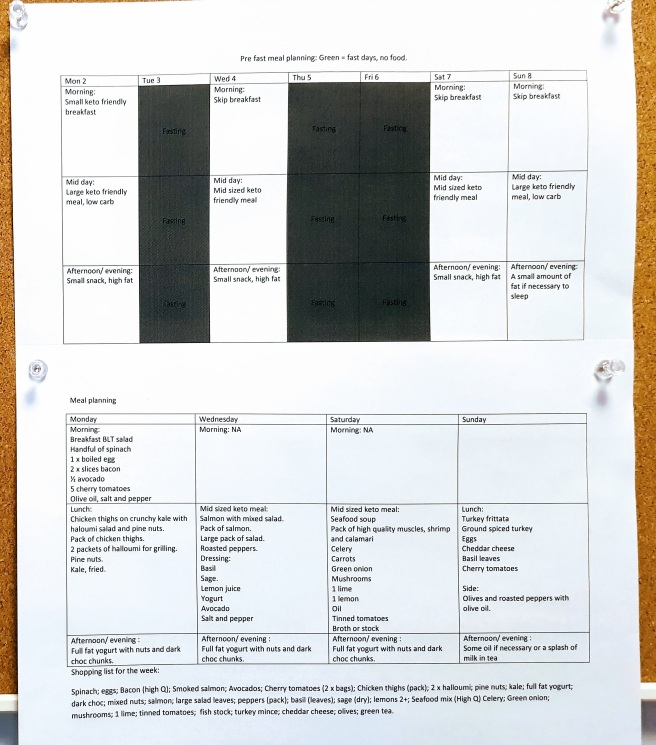 Photograph of meal plan for fasting